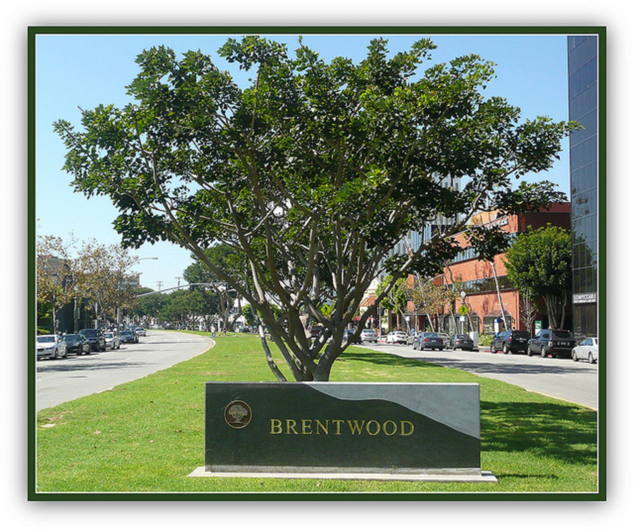 Brentwood Real Estate Market Update- Why the time to sell is now